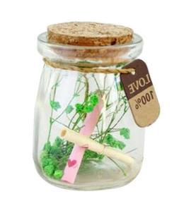 C] Creative Wishing Bottle Lucky Bottle Glass Jar with Cork